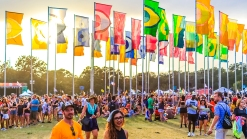 ACL (14)